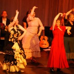 Flamenco in Hamburg