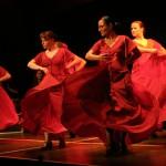 Flamenco Lernen Hamburg