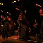 Carmen meets Flamenco