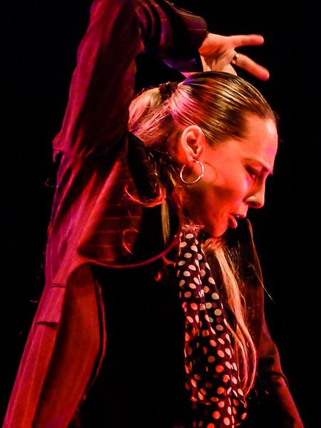 Flamenco Tanz Hamburg