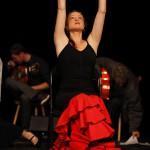 Ole Flamenco Tanz