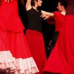 Schüler Flamenco Tanzschule Hamburg