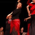 Flamenco Leidenschaft