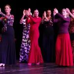 Flamenco Schule Palmas