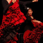 Flamenco Studio Iris Caracol