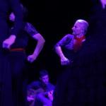 Flamenco Jungbrunnen